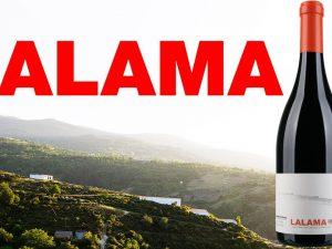 Lalama Dominio do Bibei aus Ribeira Sacra